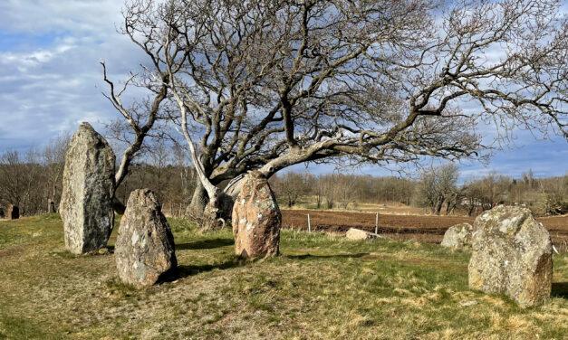 Örelids gravfält (Örelids stenar)